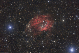 Sharpless 2-261 (Lower's nebula)